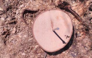 homemade sundial