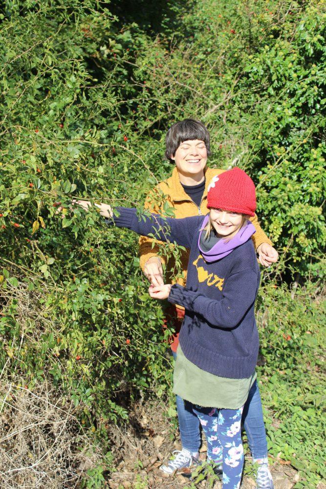 rosehip picking