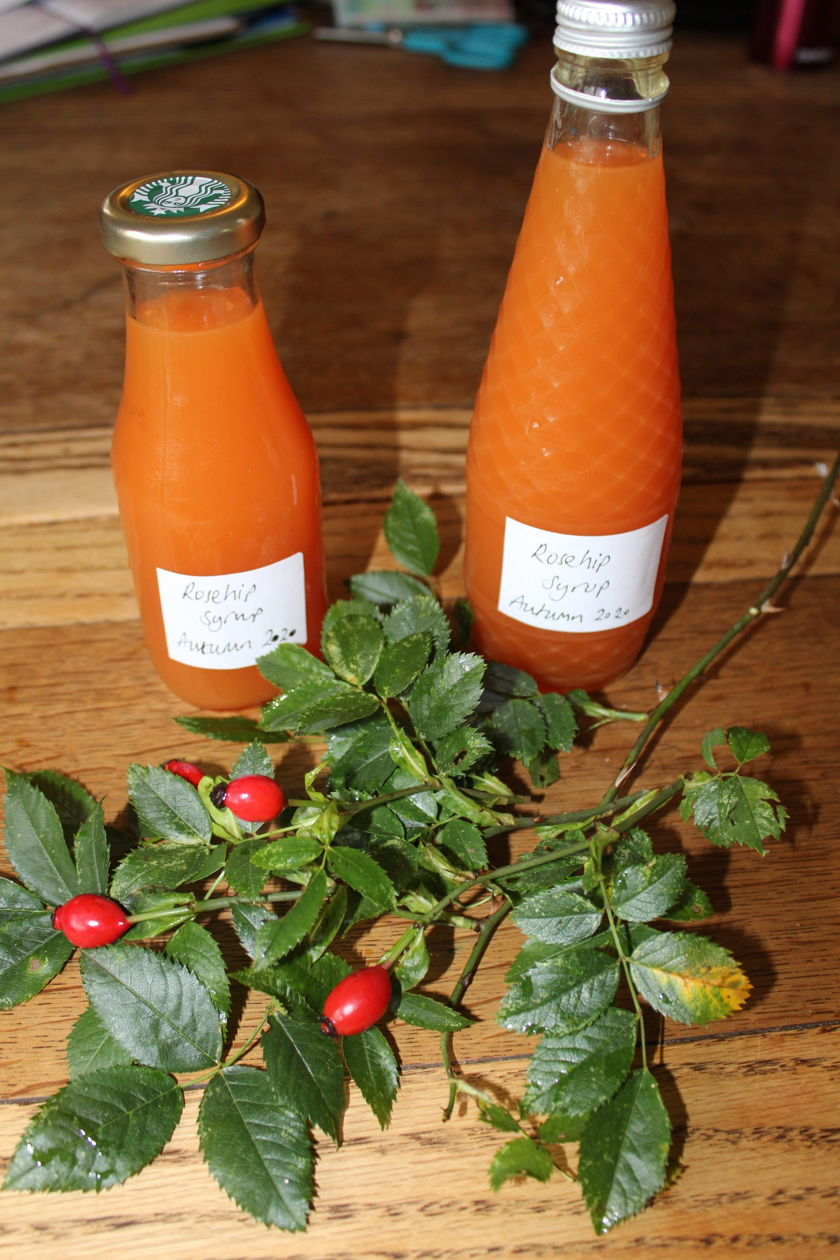 rosehip syrup bottles